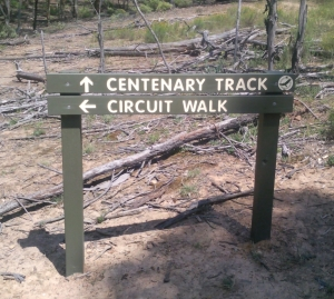 Centenary Track Junction