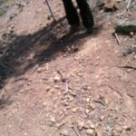 Parts of the Werribee Gorge Circuit are very rocky and loose under foot - bring a hiking pole