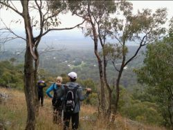 View from Mt Towrong on Mount Macedon