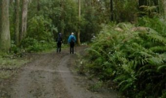 mt macedon summit walk