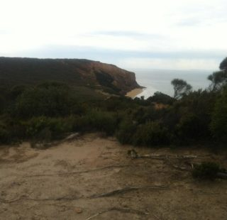 View from the sea cliffs diring the Iron Bark Basin Circuit Walk