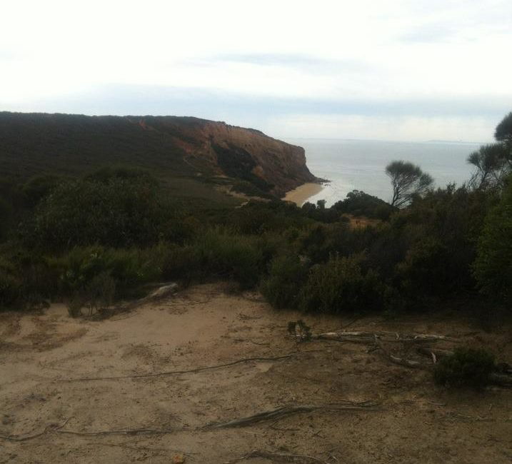 View from the sea cliffs diring the Iron Bark Basin Circuit Walk