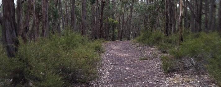 Brisbane Ranges National Park
