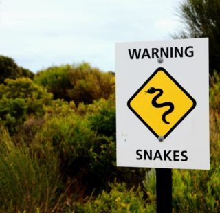 Snakes! A sign warning of snakes in the area