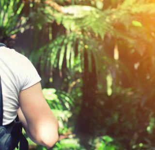 Male hiker with a backpack in a rainforest - get ready for your first hike