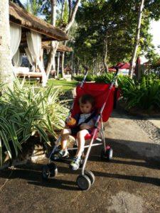 Alex is in his crappy, el-cheapo $19 KMart stroller