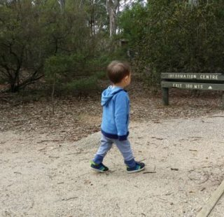 Family-friendly hikes west of Melbourne - Serendip Sanctuary