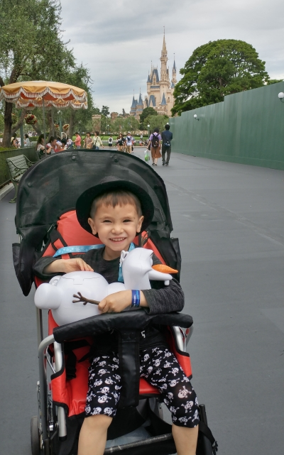 Disneyland stroller hire and popcorn