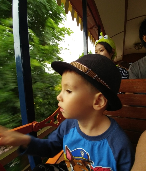 On the Western River Railroad train ride at Tokyo Disneyland
