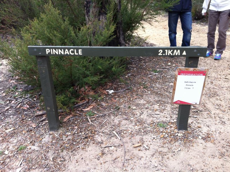 The Pinnacle Walk Sign