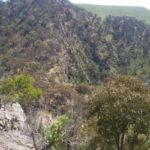 Werribee Gorge - Looking into the Gorge