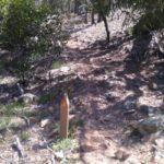 Werribee Gorge Circuit - follow the orange markers