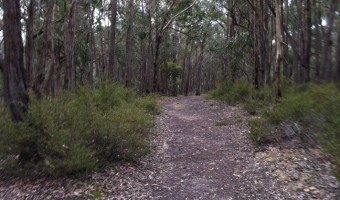 Brisbane Ranges National Park