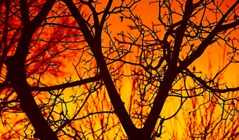Bushfires - how to hike safely during bushfire season