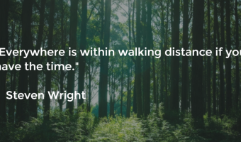 Everywhere is within walking distance if you have the time - Steven Wright