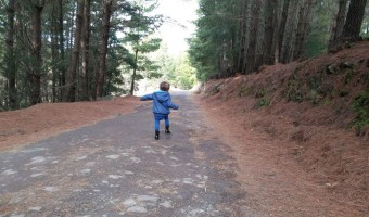 Happiness is a mountain path - little boy skipping through the woods on a sealed path