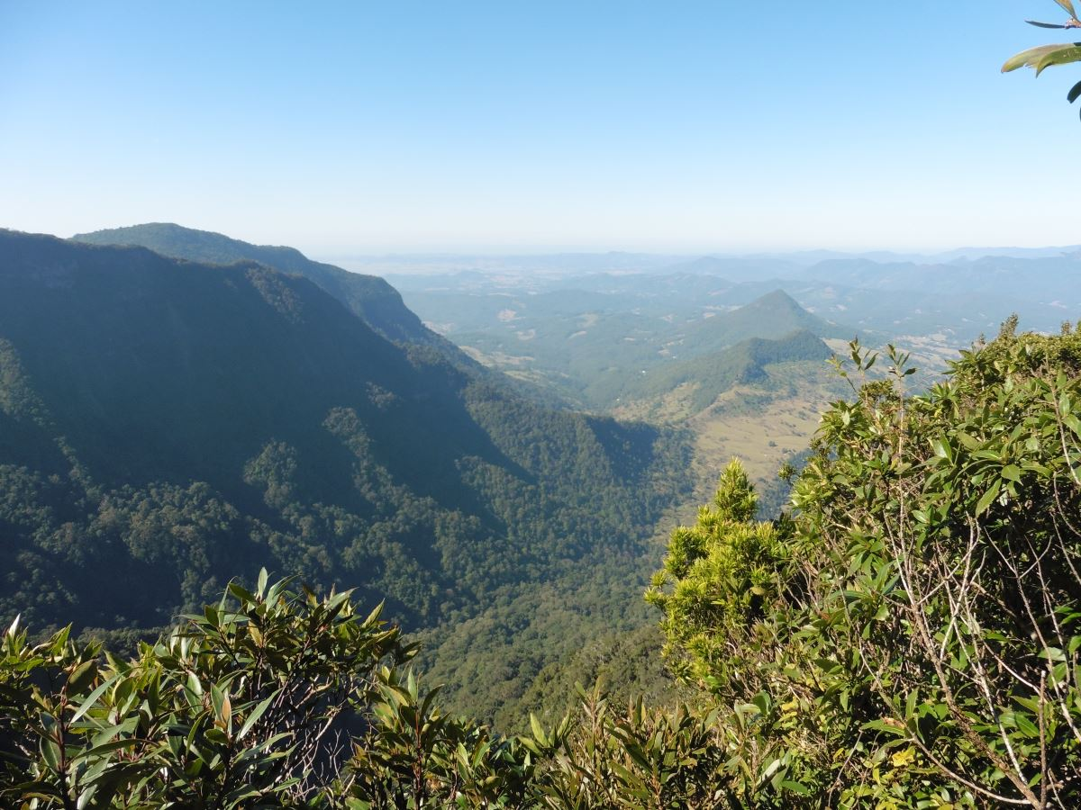 Spectacular views on the Gold Coast Hinterland Great Walk